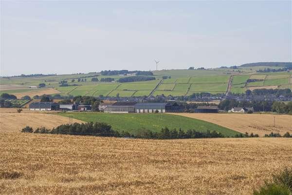 Drum Farm