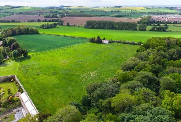 Belsis Field