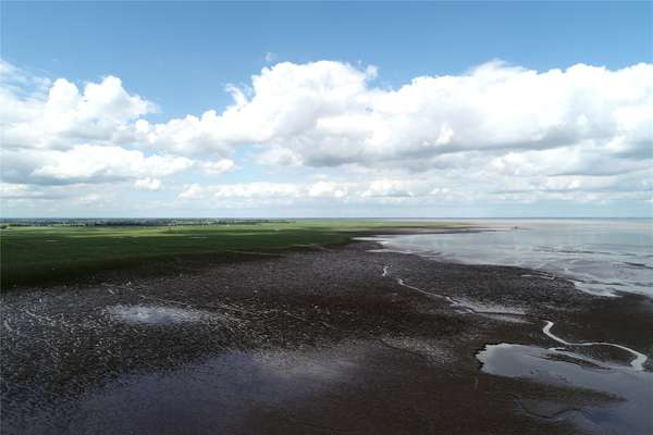 Saltmarsh & Sea Bank
