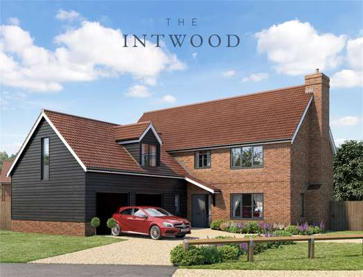 The Intwood
